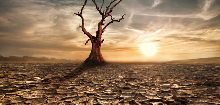 BlackRock: 'Profiteer van klimaatgerelateerde alpha'